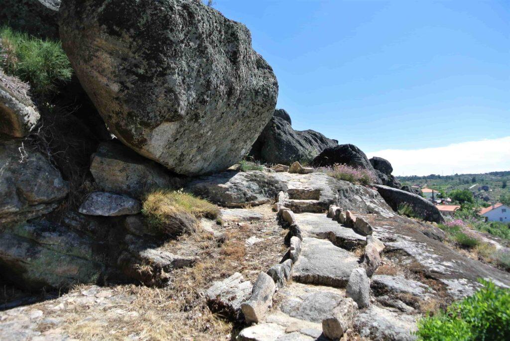 裏山に登る階段
